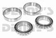 DANA SPICER 706047X DANA 60 Differential Carrier Bearings (2) 382S (2) 387A fits 1978 to 1998 Ford F250, F350
